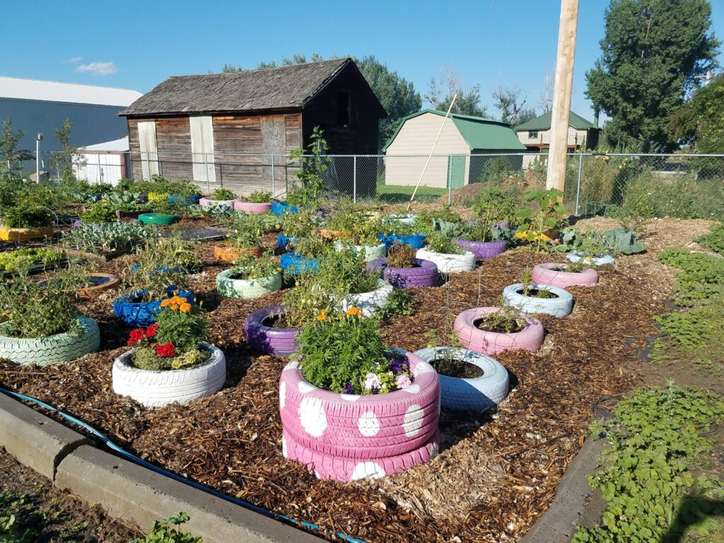 Growing for the Food Pantry